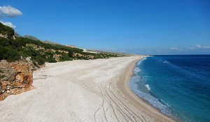 Palasa beach